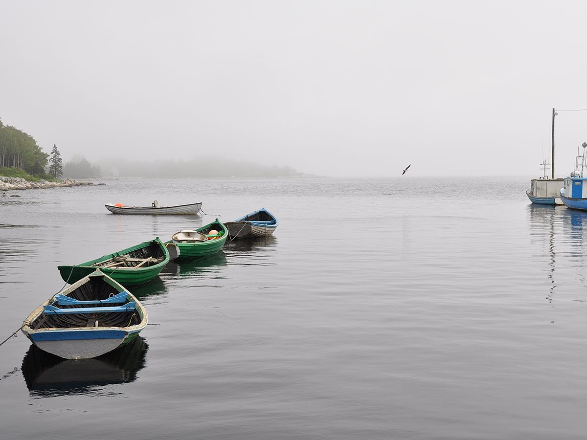 Best boat photography across Canada - Boats in fog in Cape Breton