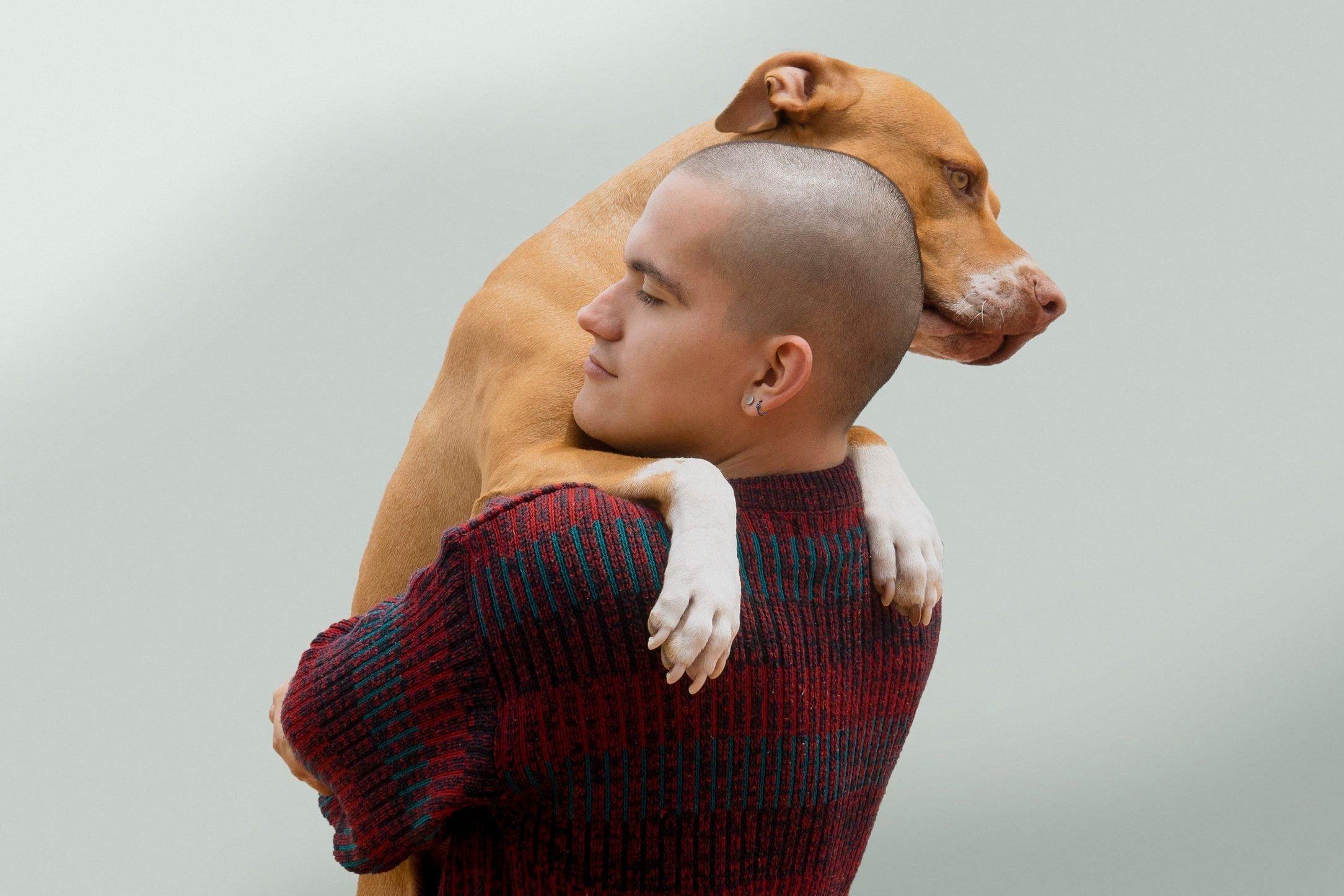 Most affectionate dog breeds - pitbull