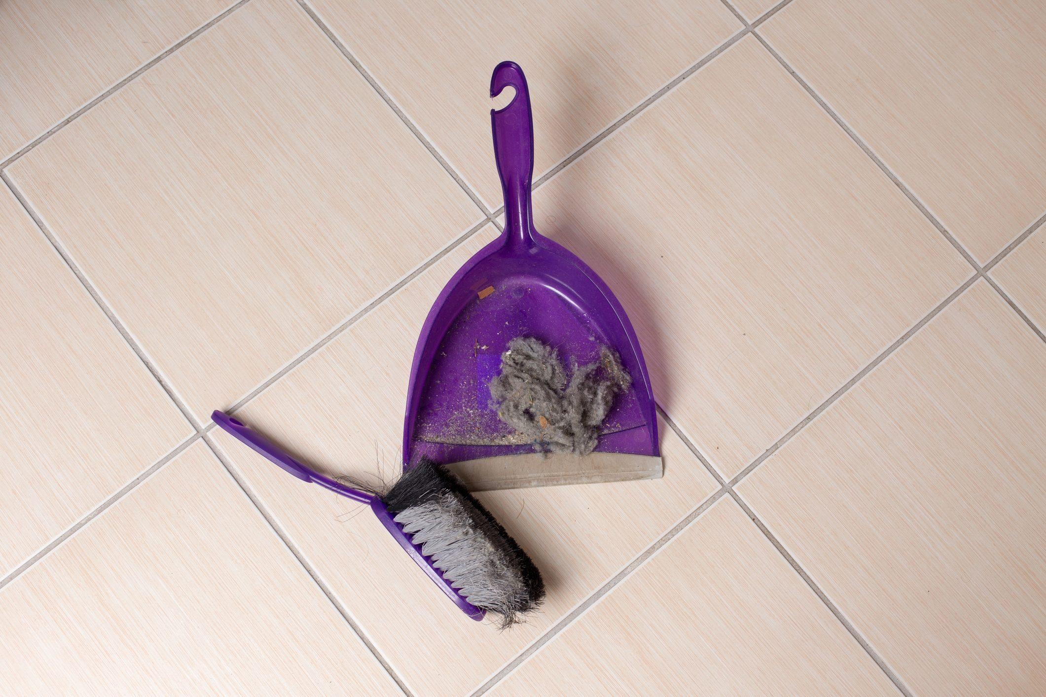 Dust pan and brush on tiled floor