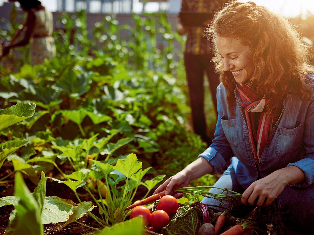 Best hobby for your zodiac - Gardening