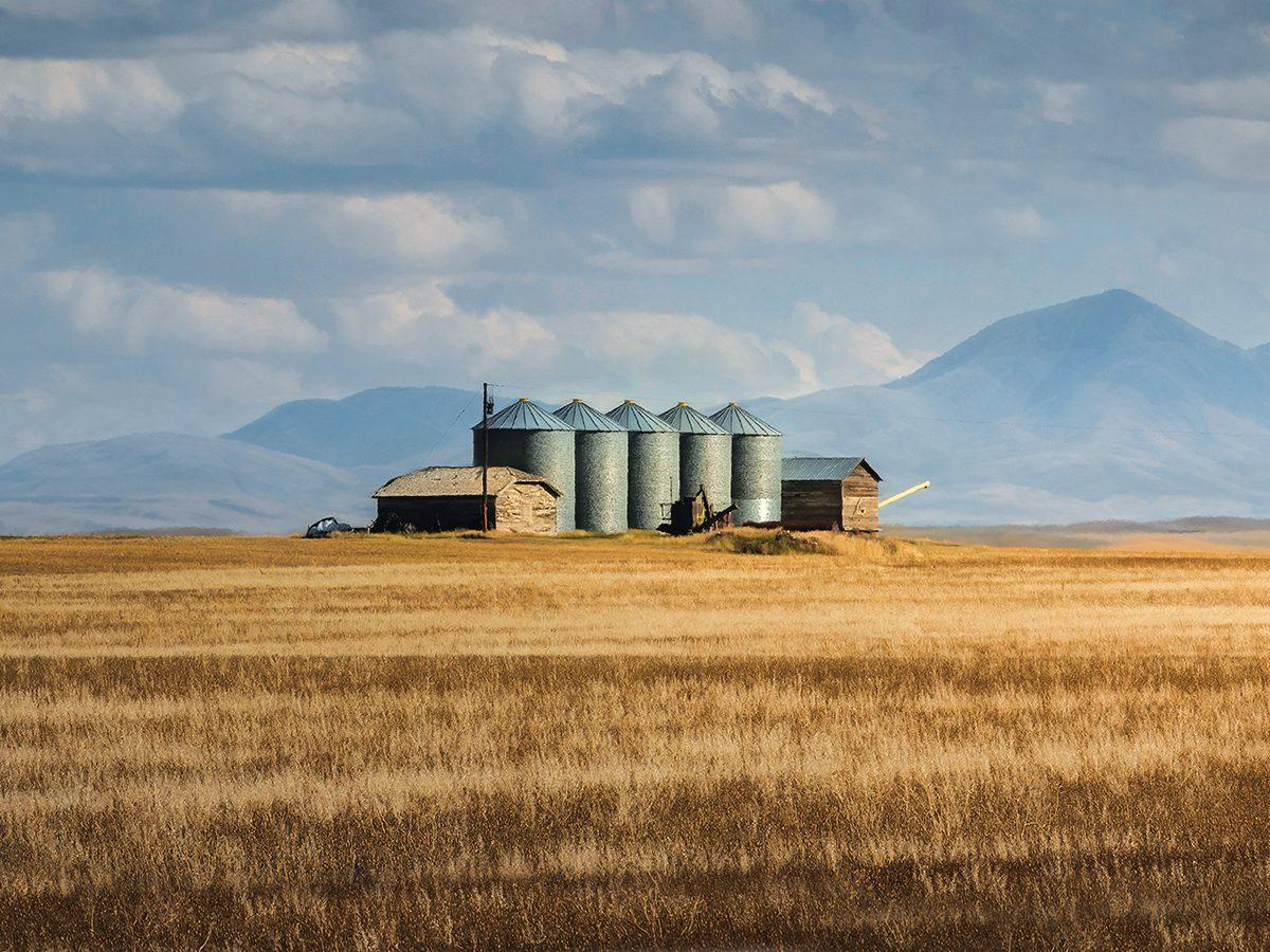 Farming in Southern Alberta