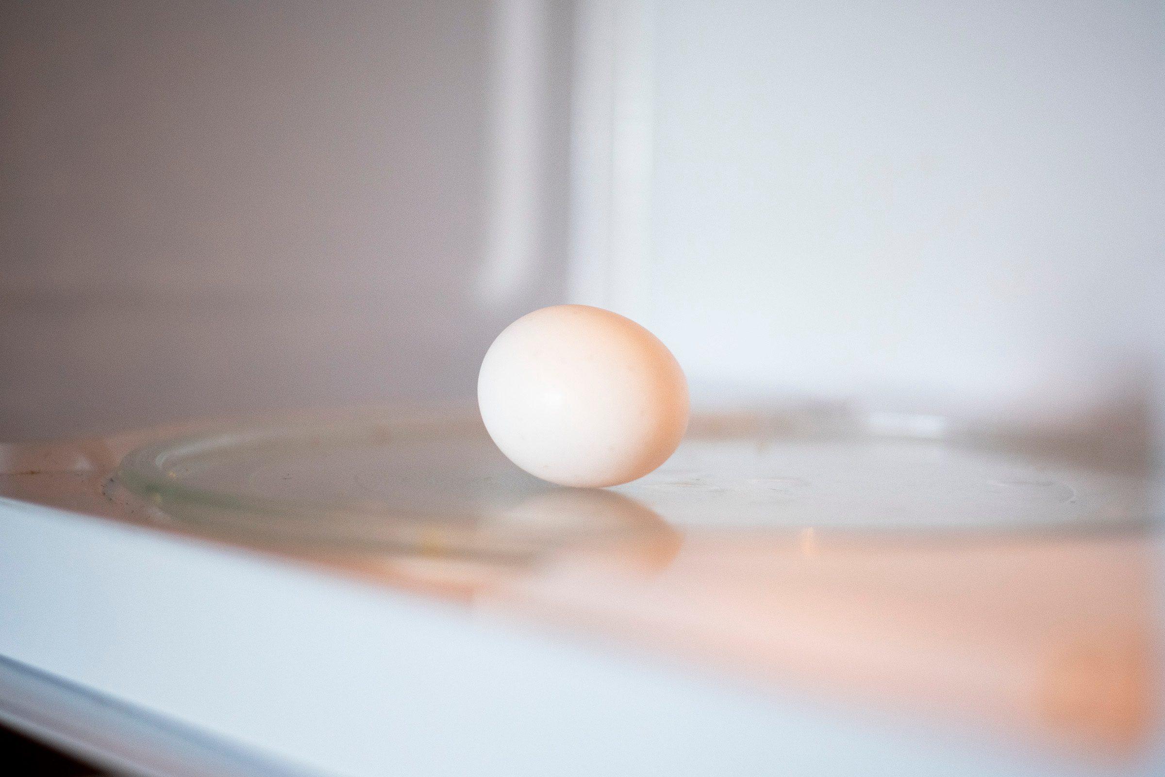 microwave egg