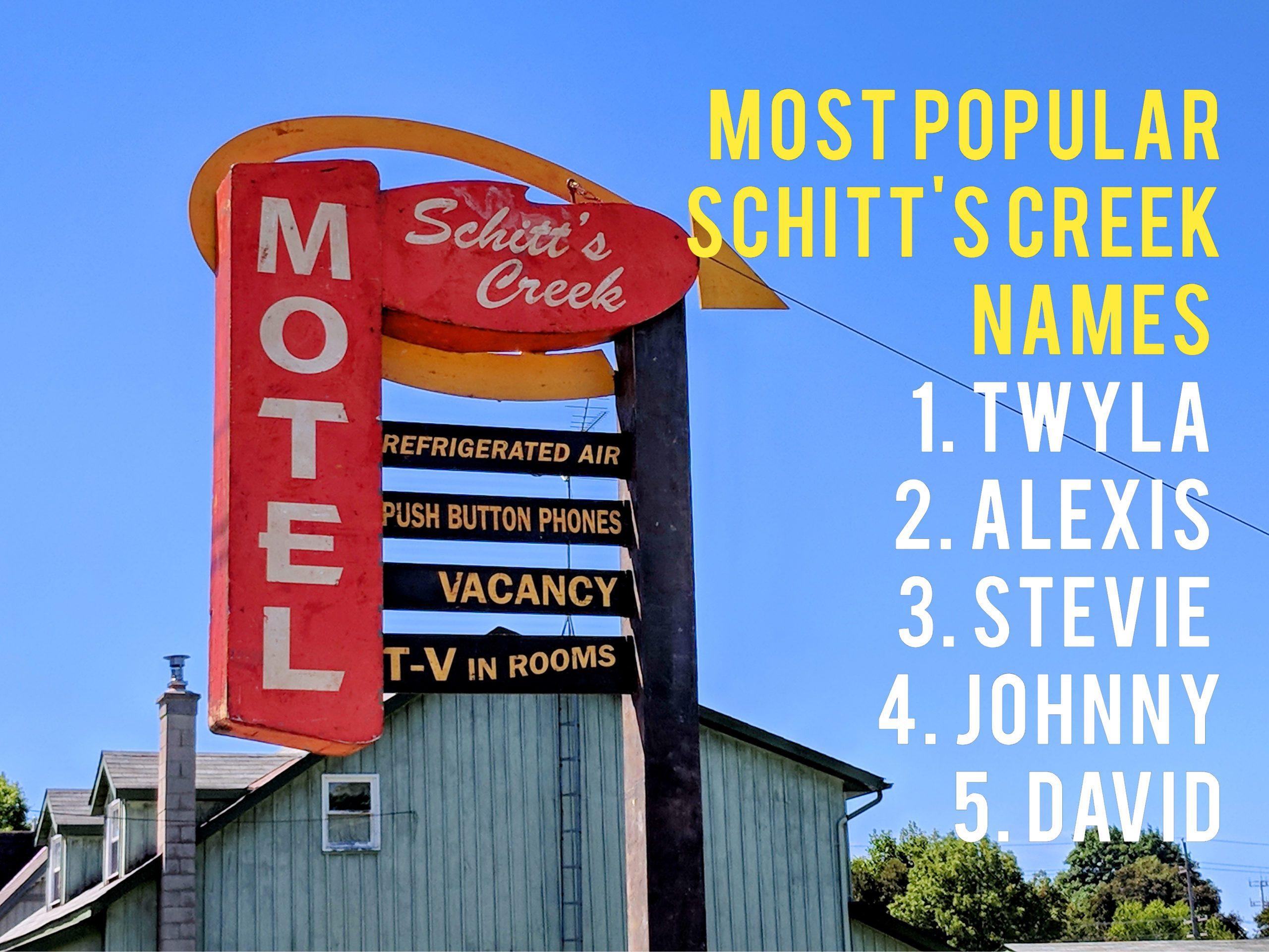 Most popular dog names in Canada 2020 - Schitt's Creek names
