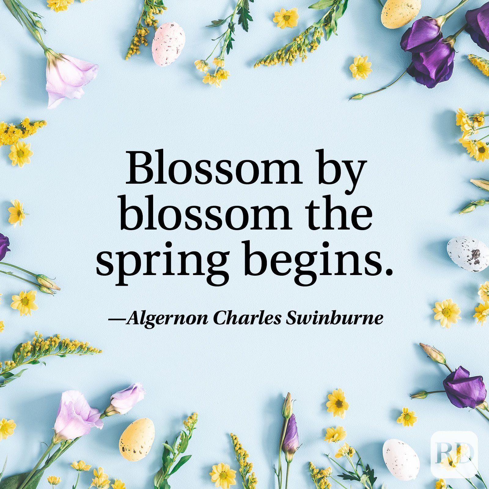 """""""Blossom by blossom the spring begins."""" — Algernon Charles Swinburne"""