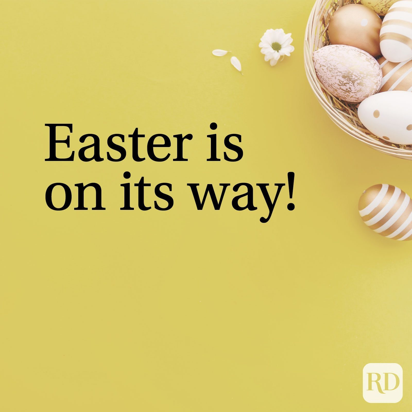 Easter eggs and flowers with text: Easter is on its way!