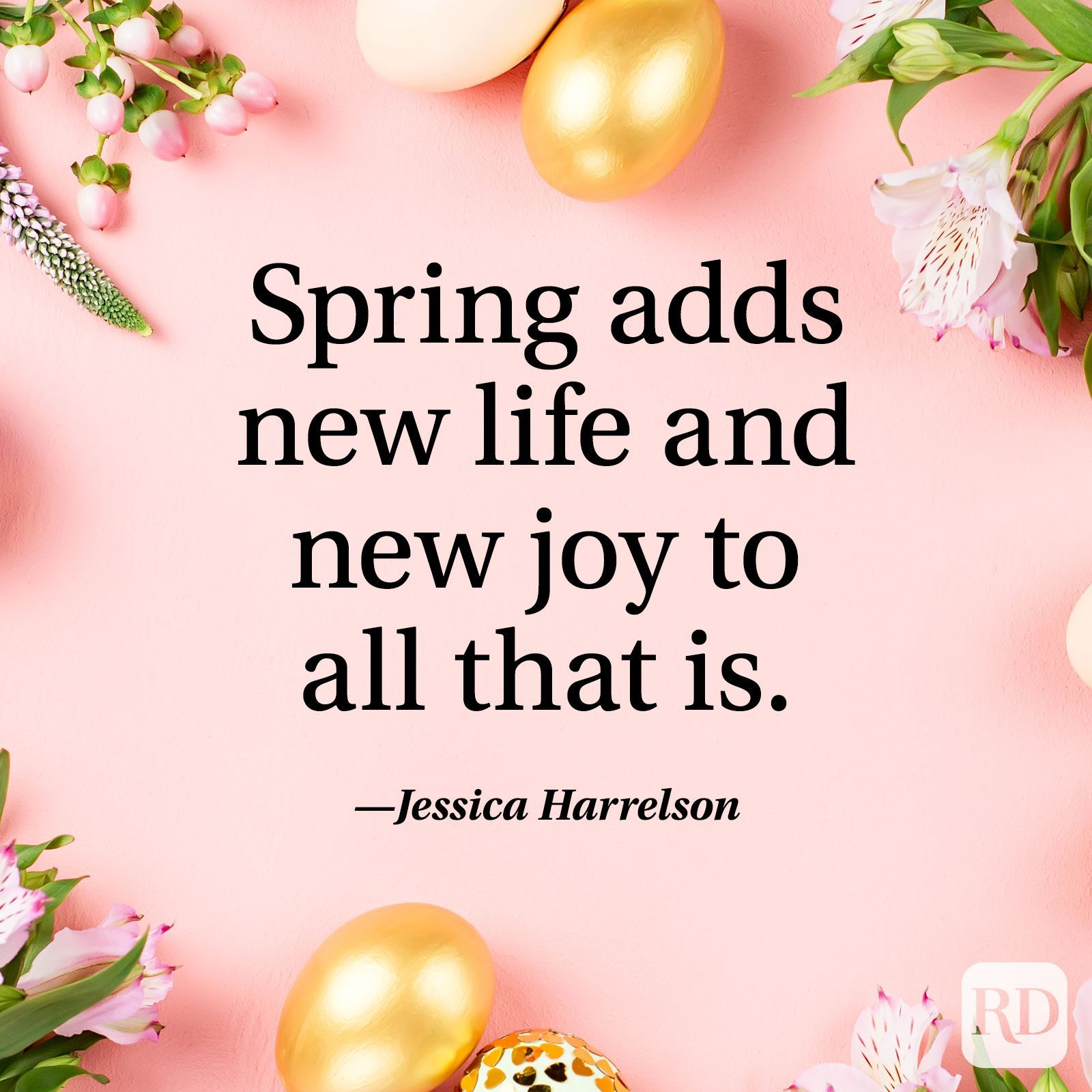 """""""Spring adds new life and new joy to all that is."""" — Jessica Harrelson"""