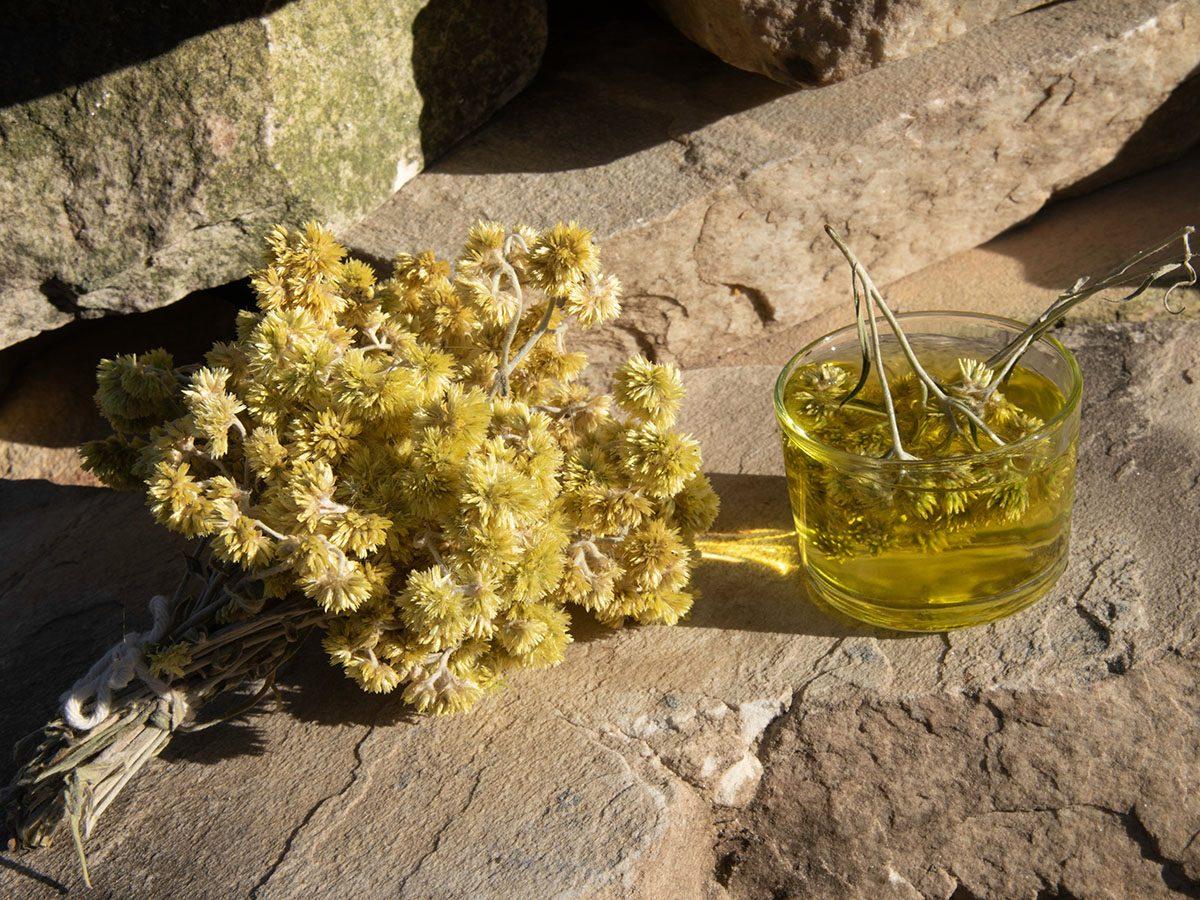 Macela Flowers and medicament on rocks.
