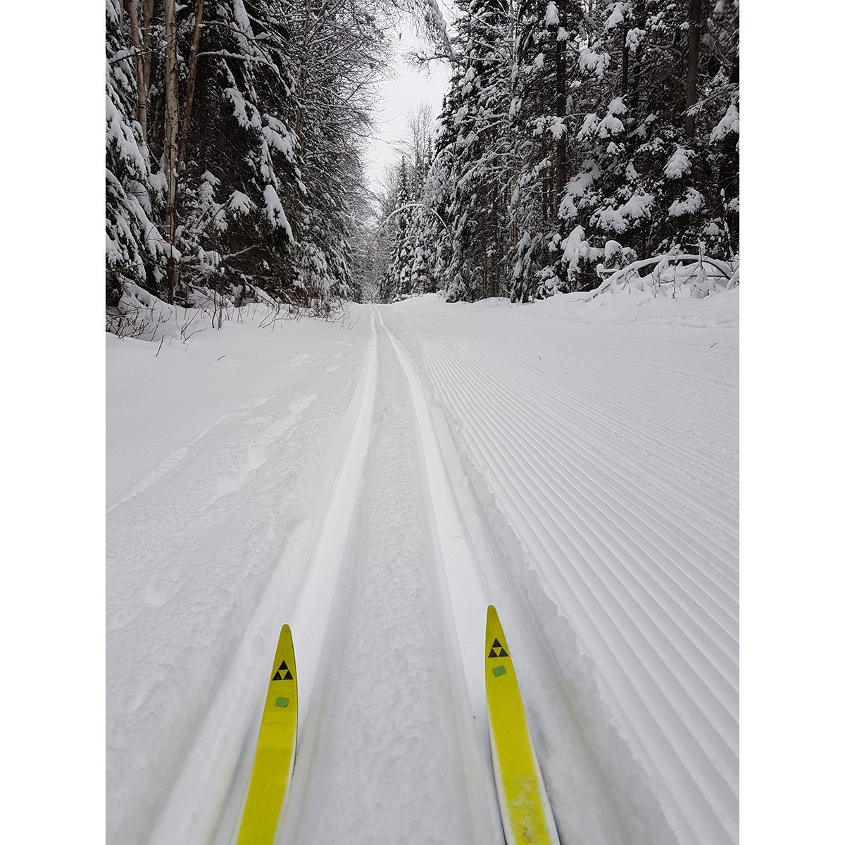 My Happy Place - Cross Country Ski Trails