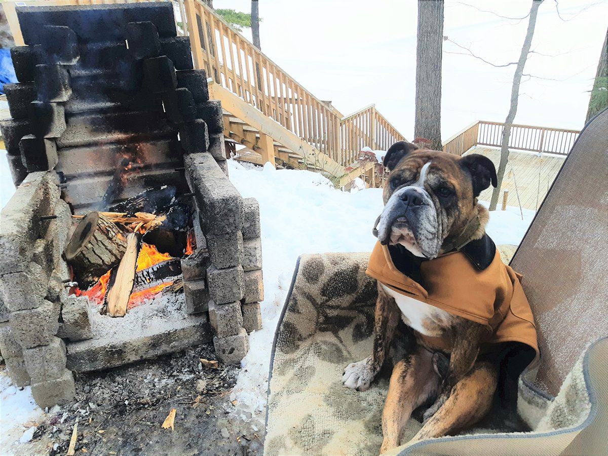 My Happy Place - Dog Fire
