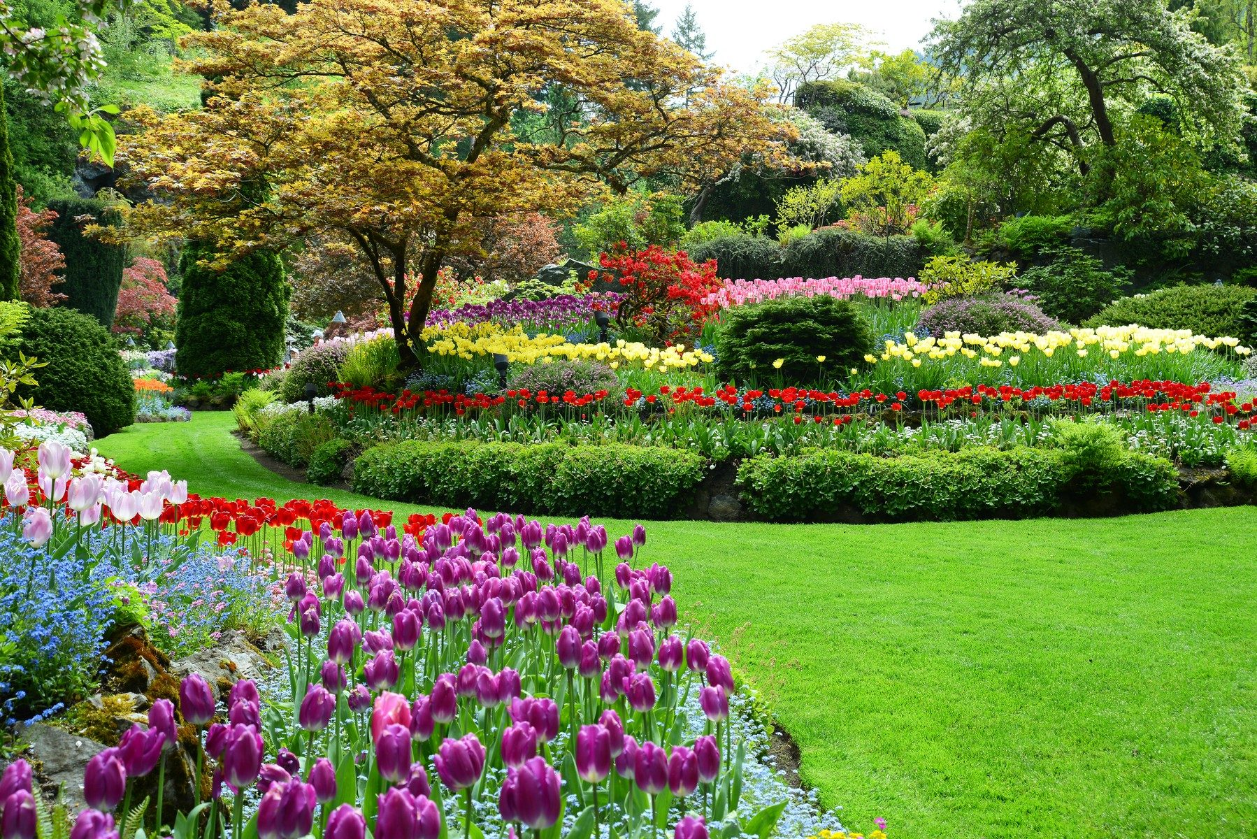 Butchart Gardens Botanical Gardens