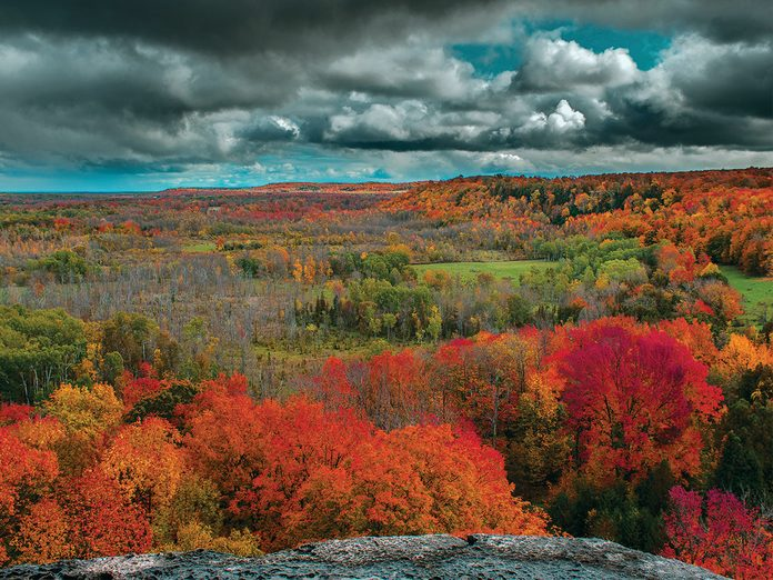 Grey Bruce attractions - Skinner's Bluff scenic outlook
