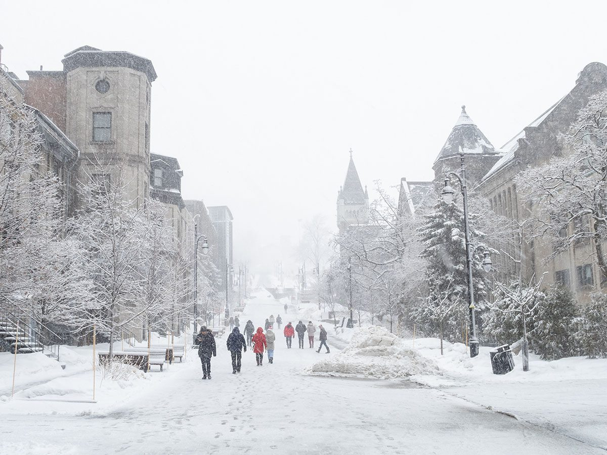 View of McTavish street in McGill university campus during snowstorm.