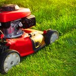 This is When You Should Start Mowing Your Lawn in the Spring
