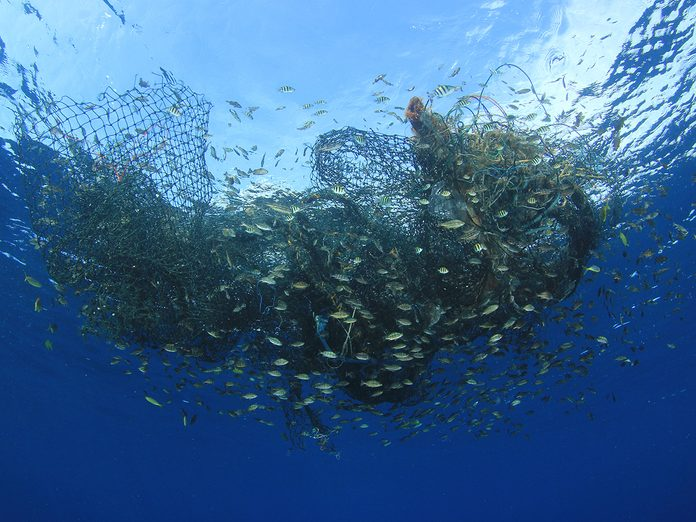 Earth Day Quiz - Overfishing