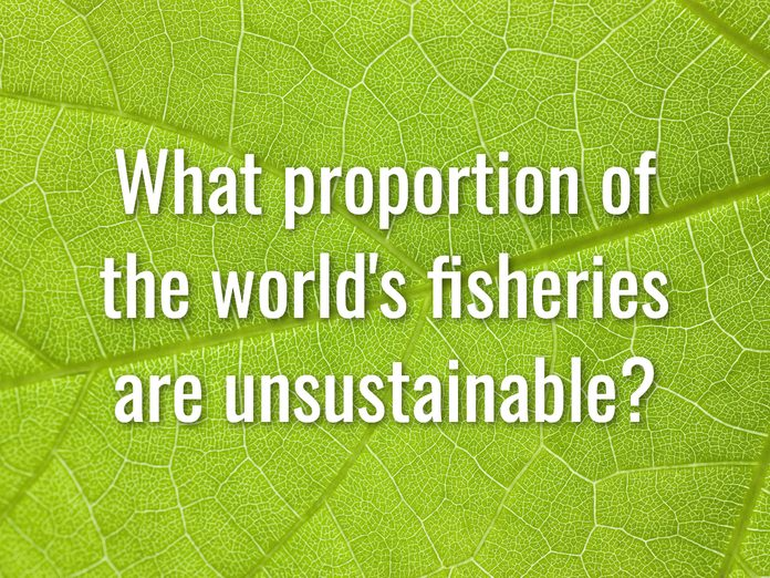 Earth Day Quiz - Question 11