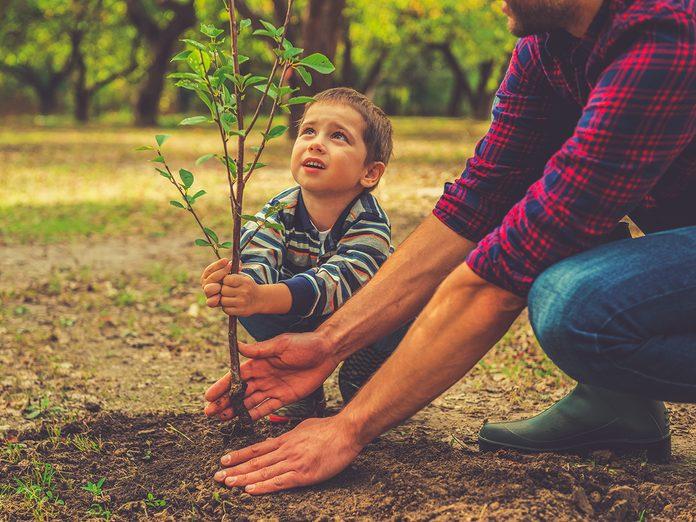 Earth Day Quiz - Tree Planting