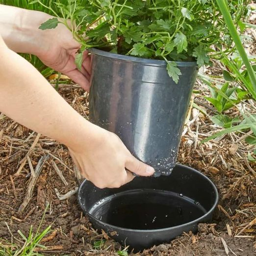 This Clever Landscaping Trick Will Transform Your Yard