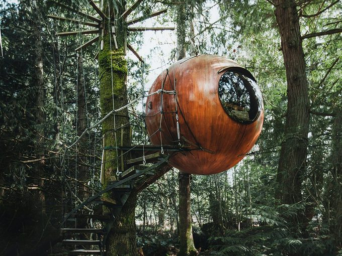Hidden Gems in BC - Vancouver Island Free Spirit Spheres