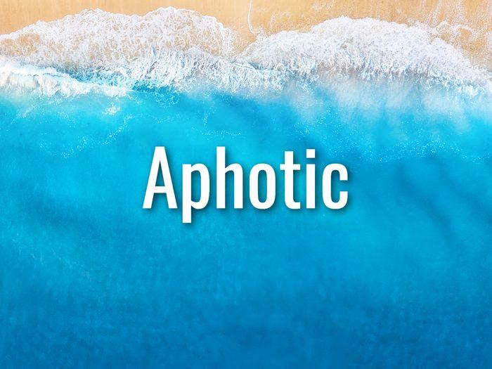 Ocean Words - Aphotic