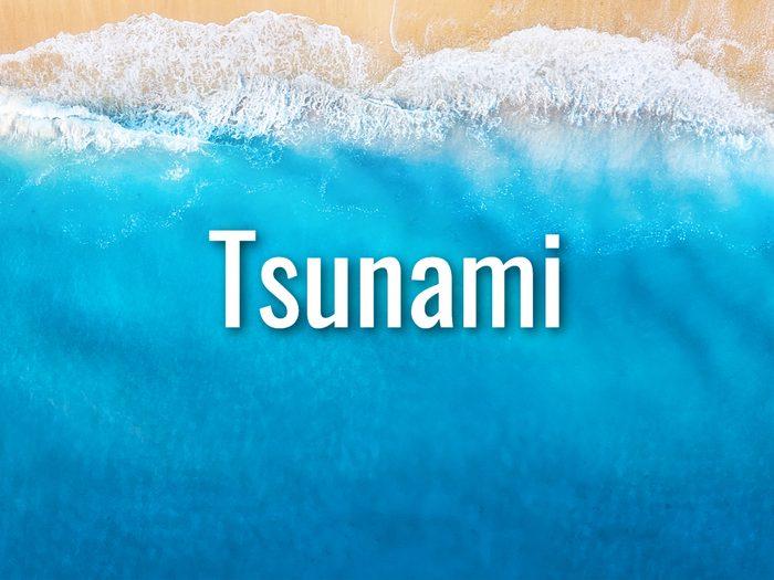 Ocean Words - Tsunami