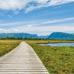 Following Newfoundland's West Coast